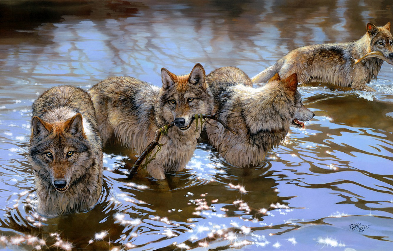 Photo wallpaper look, water, light, glare, river, figure, graphics, fishing, wolf, predators, fish, pack, picture, branch, bathing, …