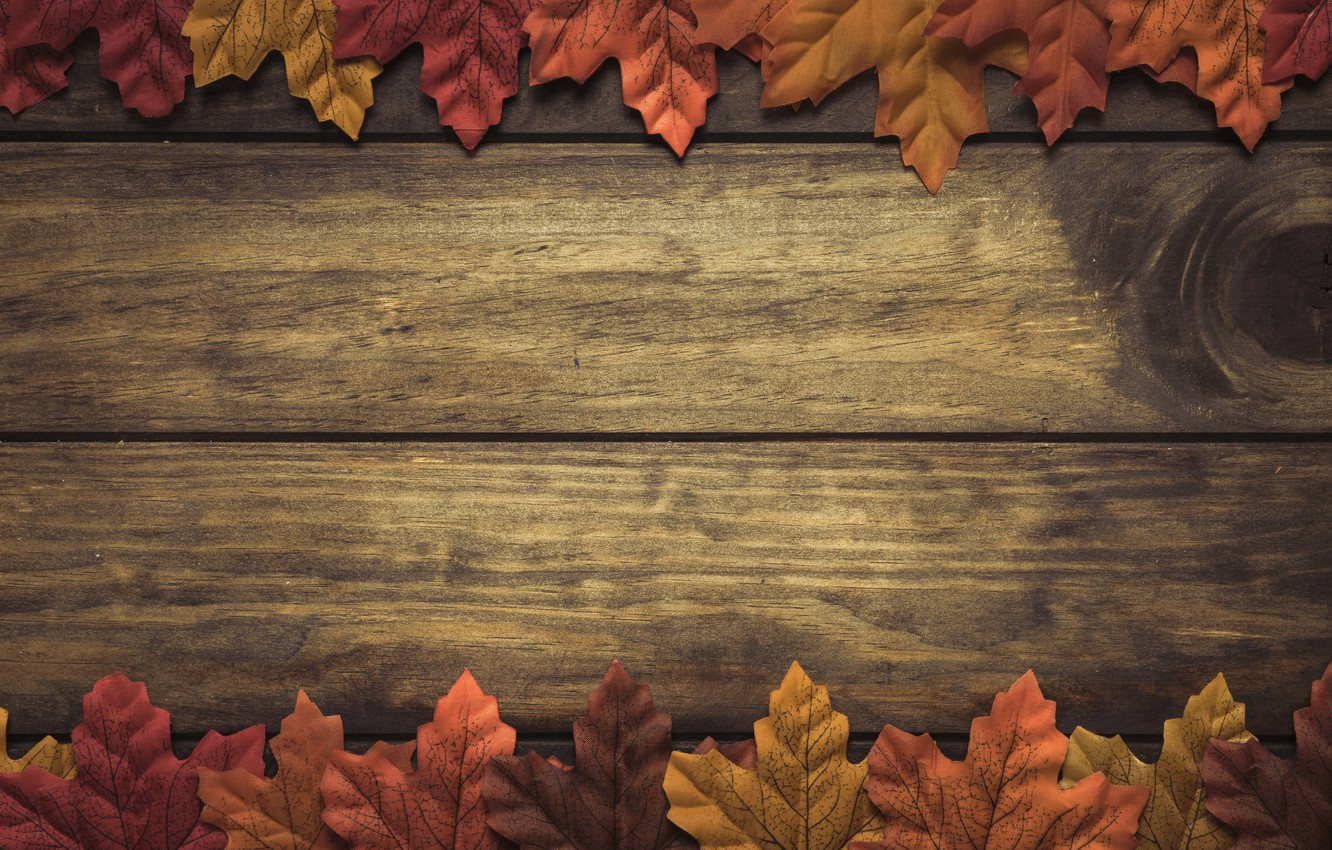 Photo wallpaper autumn, leaves, background, tree, wood, background, autumn, leaves, autumn, maple