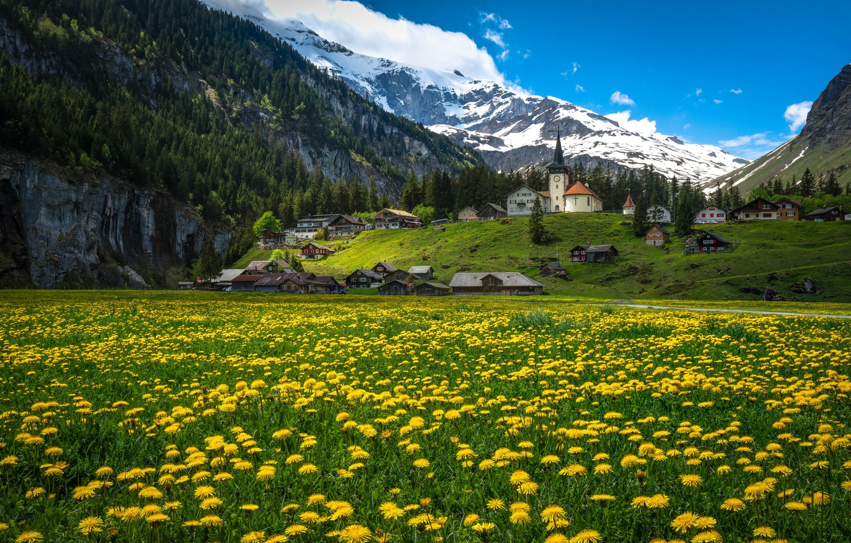 Photo wallpaper flowers, mountains, home, Switzerland, village, Alps, meadow, dandelions, Switzerland, Alps, Urnerboden, The Canton Of URI, …