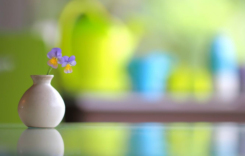 Photo wallpaper flowers, background, vase
