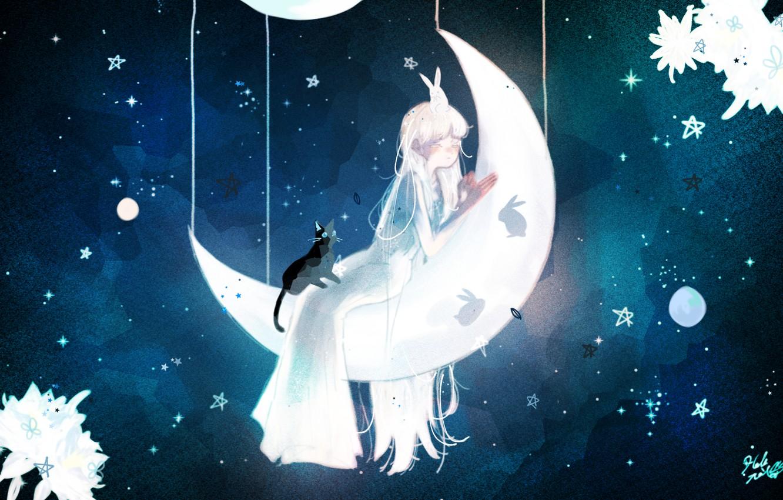Photo wallpaper cat, night, girl, rabbits, Crescent