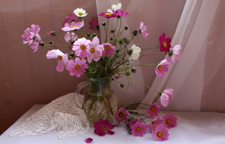Photo wallpaper flowers, table, vase, pink, still life, tablecloth, tulle, kosmeya