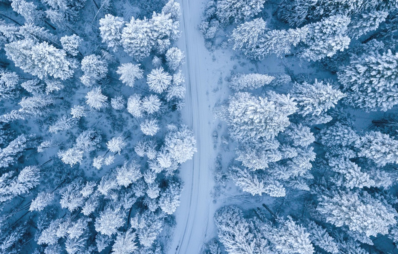 Wallpaper Nature Winter Landscape Snow Trees Images For