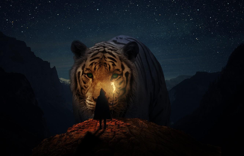 Photo wallpaper animals, cats, nature, girls, landscapes, Tiger, fantasy