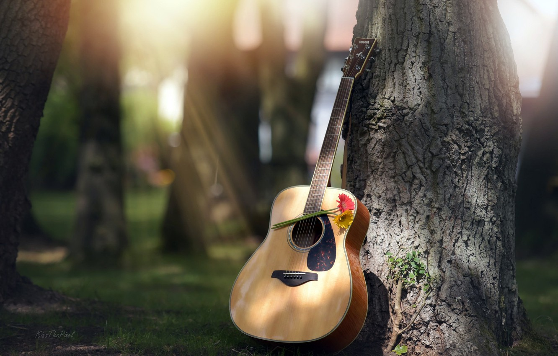 Photo wallpaper flowers, tree, guitar