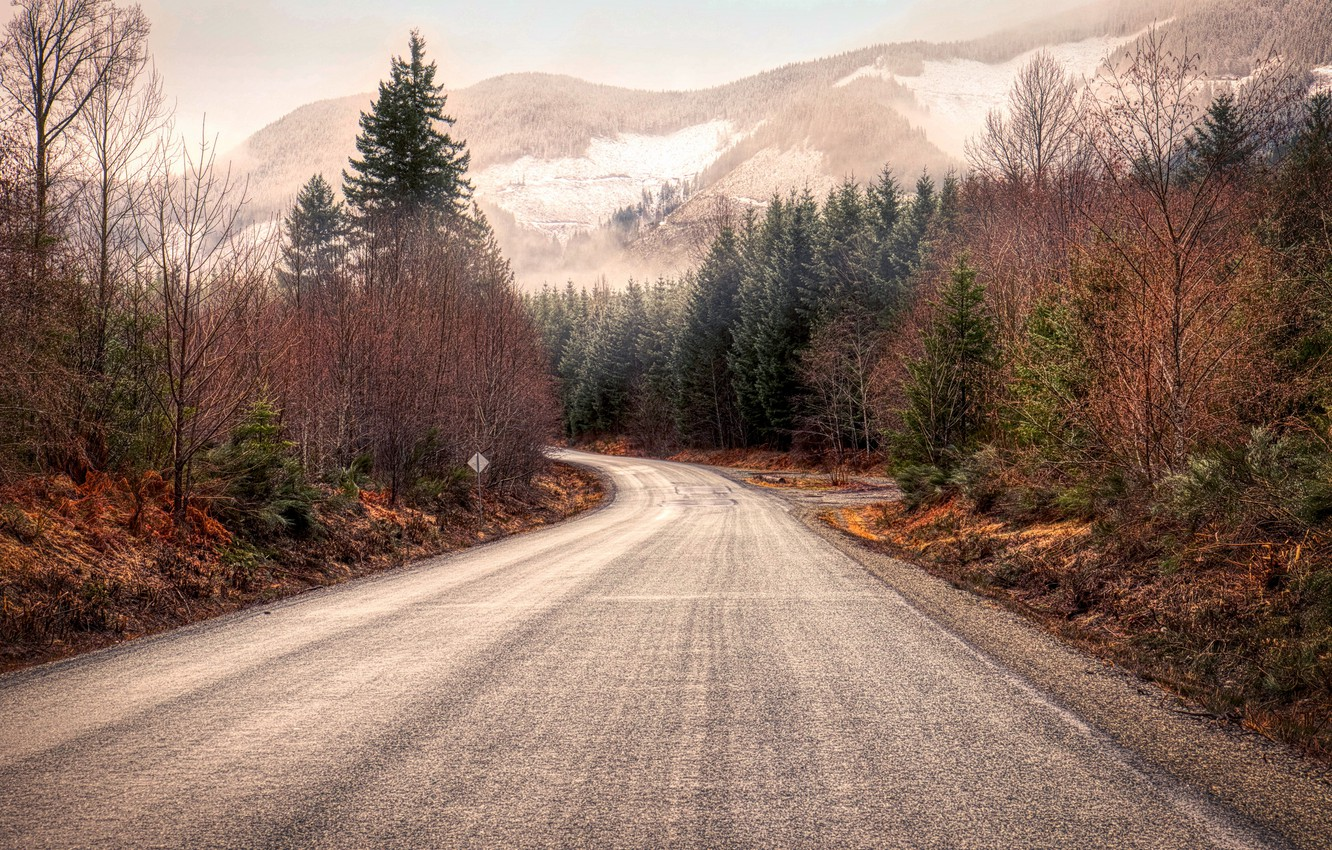 Photo wallpaper road, forest, mountains, nature, Vancouver, Road to Fairy Lake