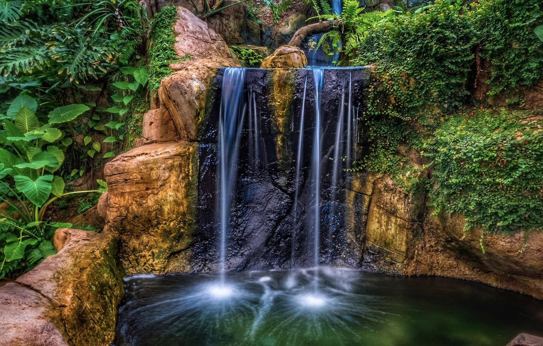 Photo wallpaper water, rock, Park, waterfall, HDR, plants, rock, nature, park, waterfalls, plants