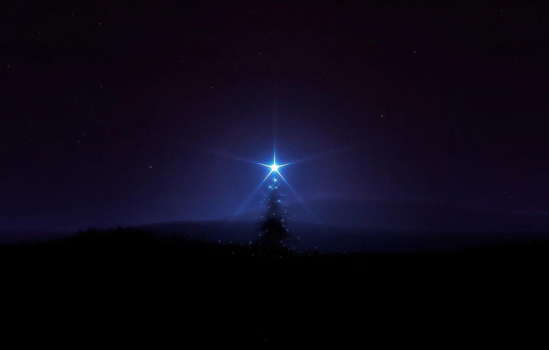 Wallpaper Darkness The Darkness Star Tree Lonely Tree Dark