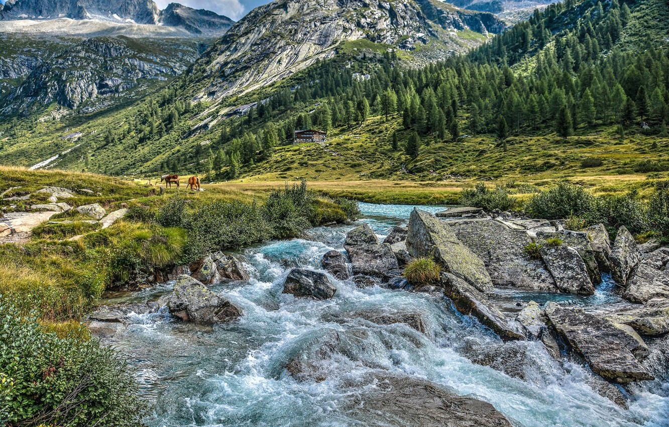 Photo wallpaper mountains, river, stones, valley, Alps, Italy, Italy, Alps, Trentino, Trentino, Val di Fumo, Shelter Valley …