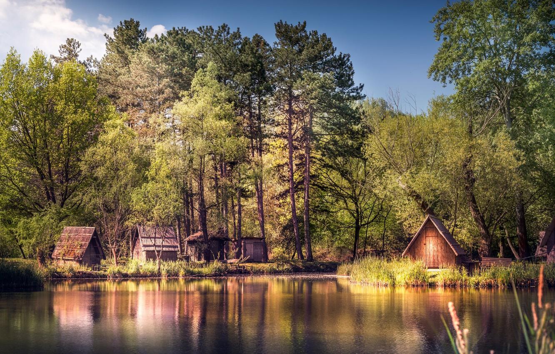 Photo wallpaper trees, landscape, nature, river, beauty, houses