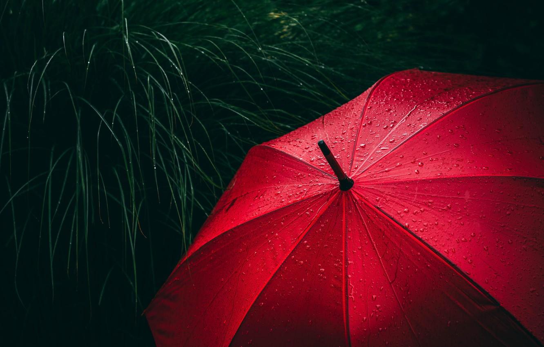 Photo wallpaper red, grass, rain, close-up, umbrella, water, macro, blur, drops, rain drops, raining, 5k hd background