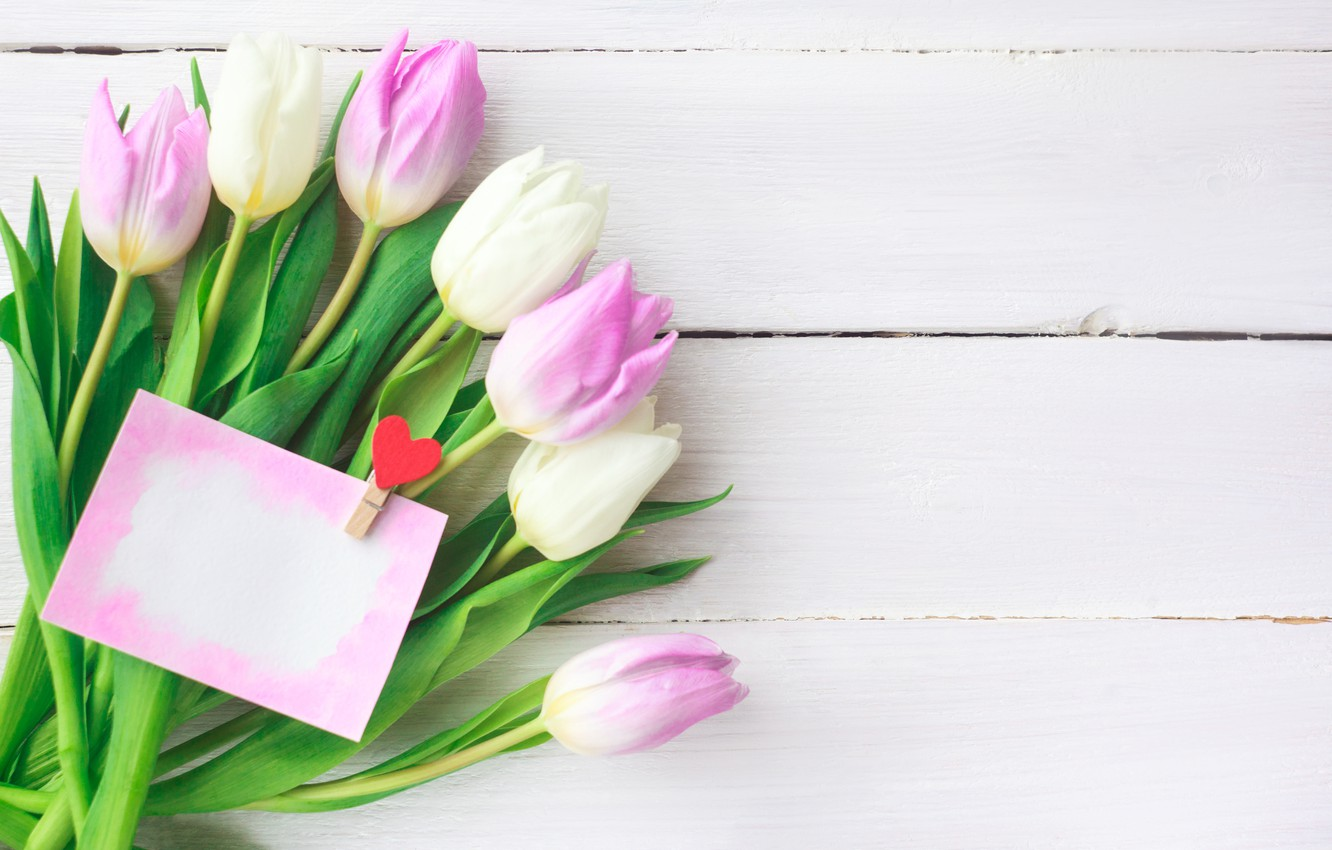 Photo wallpaper flowers, bouquet, tulips, love, pink, white, fresh, pink, flowers, romantic, tulips, spring