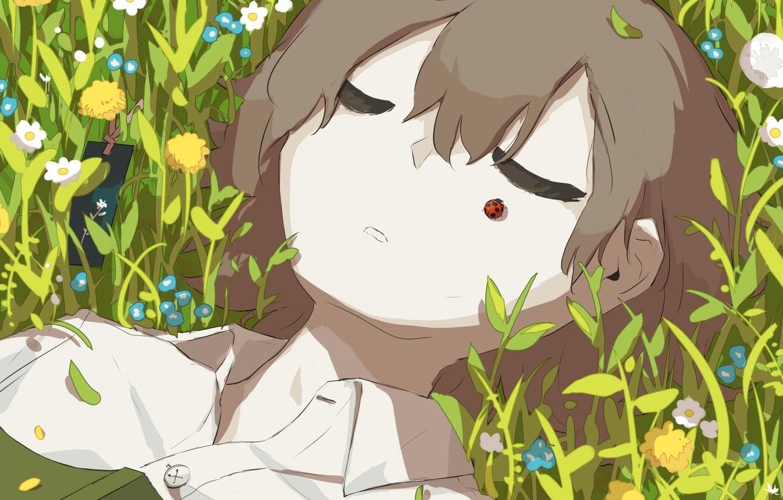 Photo wallpaper grass, ladybug, boy, sleeping, book