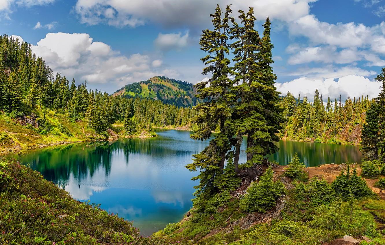 Photo wallpaper United States, Washington, Whatcom
