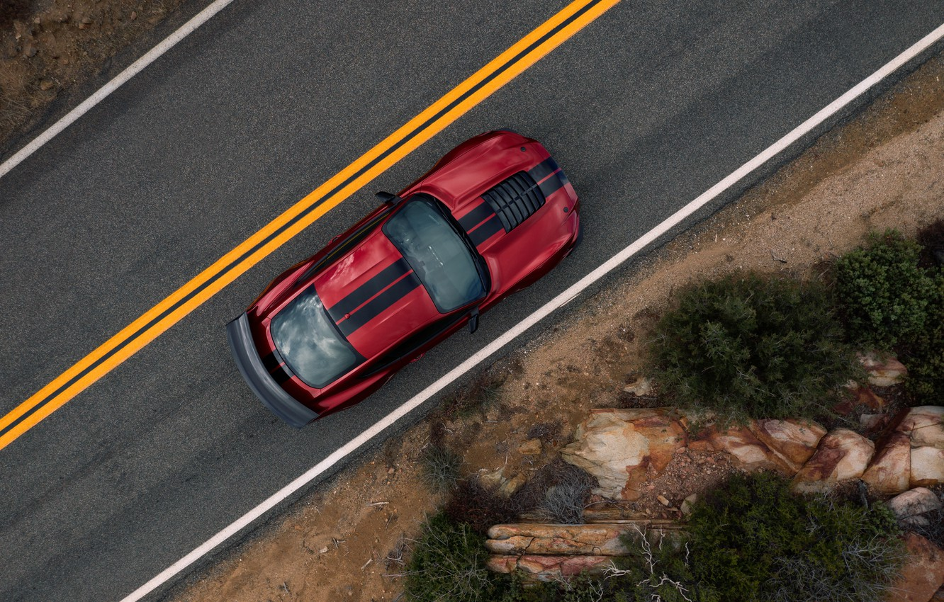 Photo wallpaper Mustang, Ford, Shelby, GT500, the view from the top, bloody, 2019