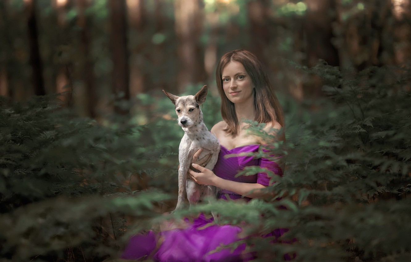 Photo wallpaper forest, girl, dog