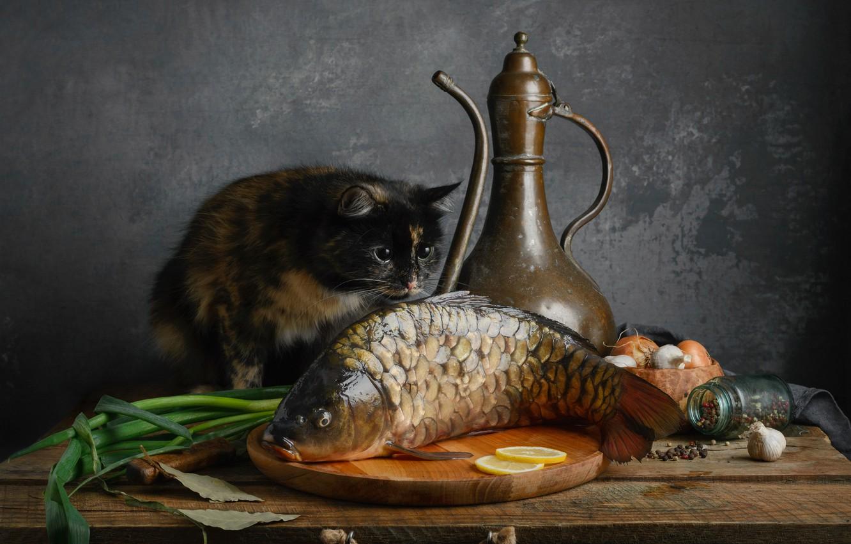 Photo wallpaper cat, cat, fish, carp