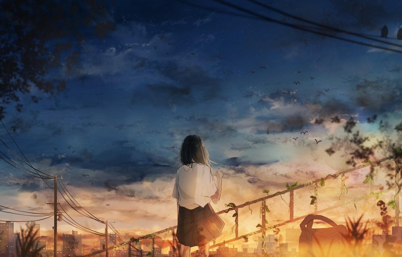 Photo wallpaper girl, sunset, the city