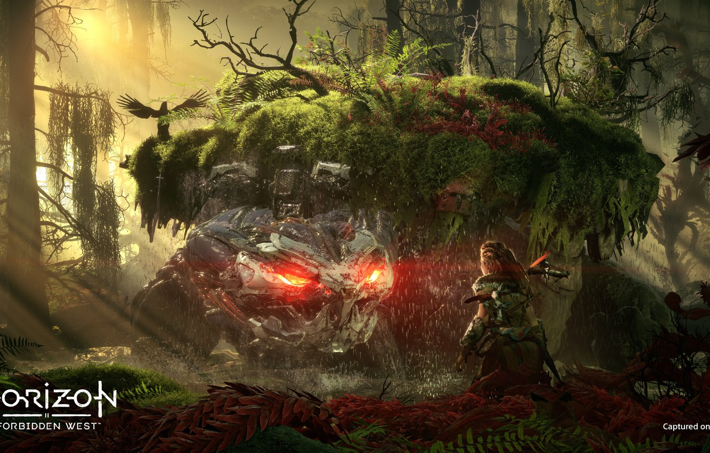 Photo wallpaper The game, Game, Guerrilla Games, Sony Interactive Entertainment, PlayStation 5, PS 5, Horizon: Zero Dawn …