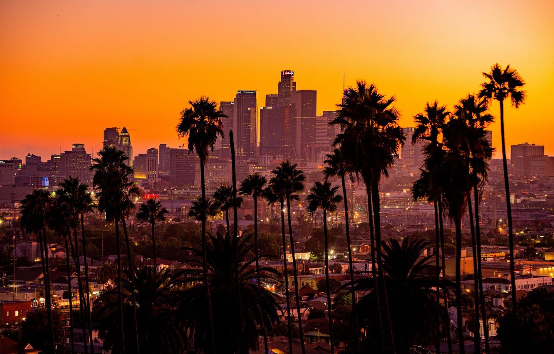Wallpaper City Sunset California Palm Trees Los Angeles