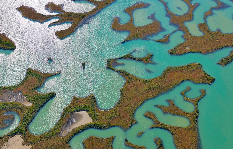 Photo wallpaper water, Spain, swamp, Природный парк Баия-де-Кадис