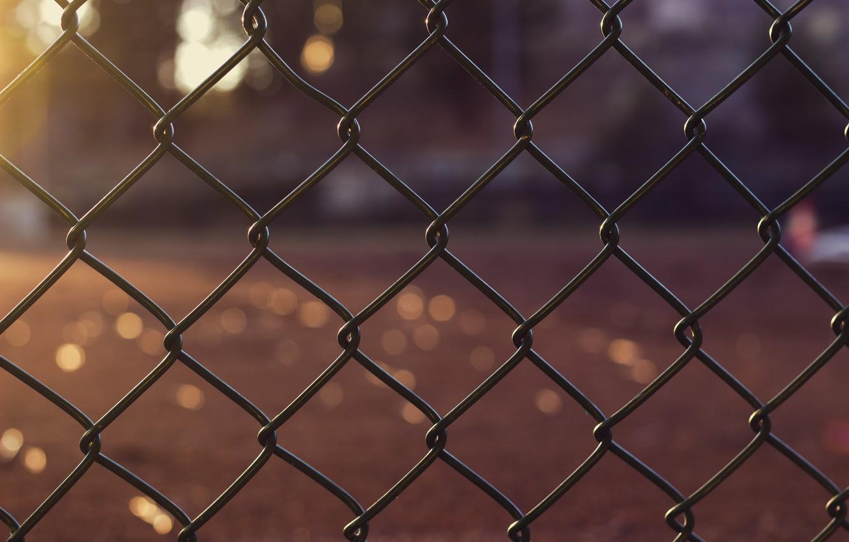 Photo wallpaper photo, mesh, bokeh, the fence macro