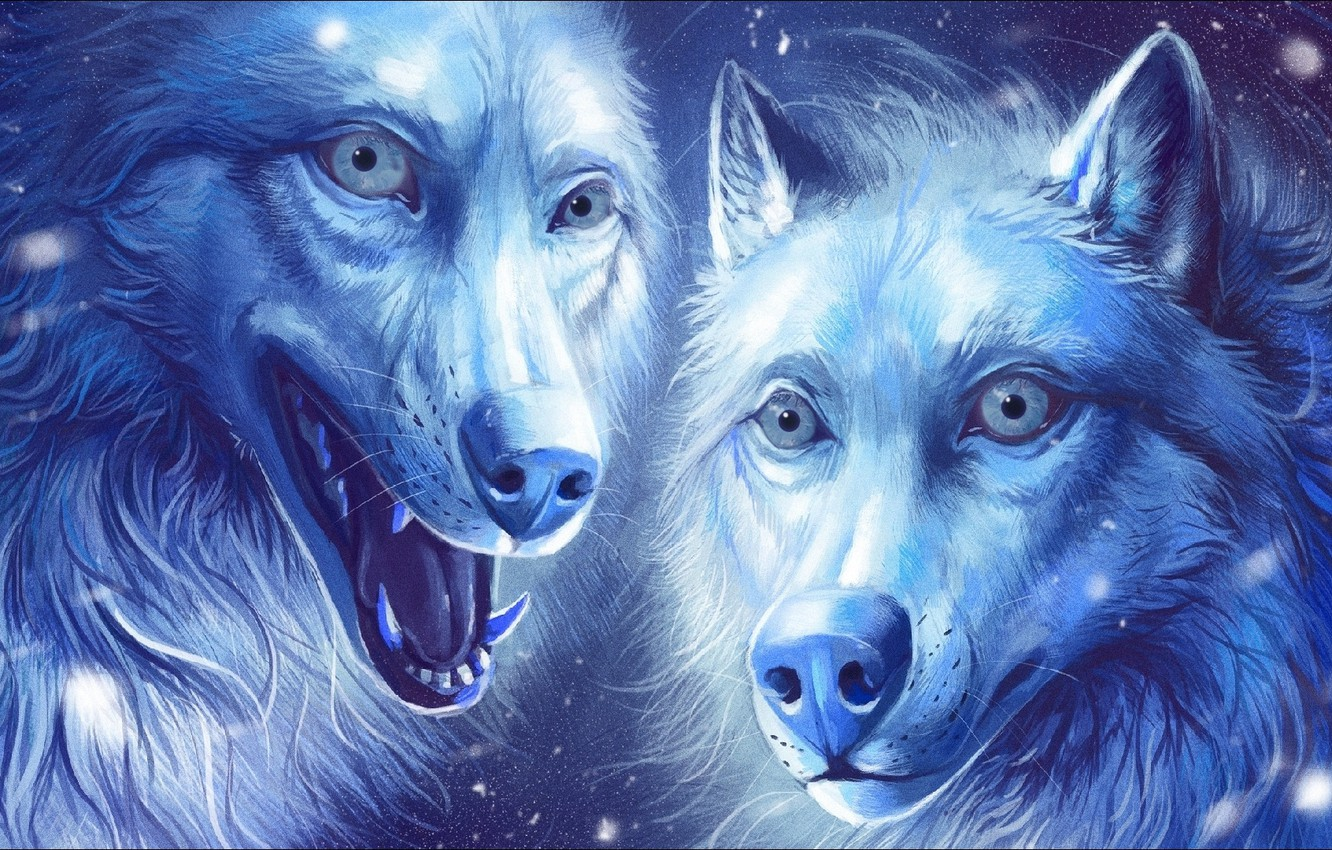 Wallpaper fantasy, Art, two, wolves