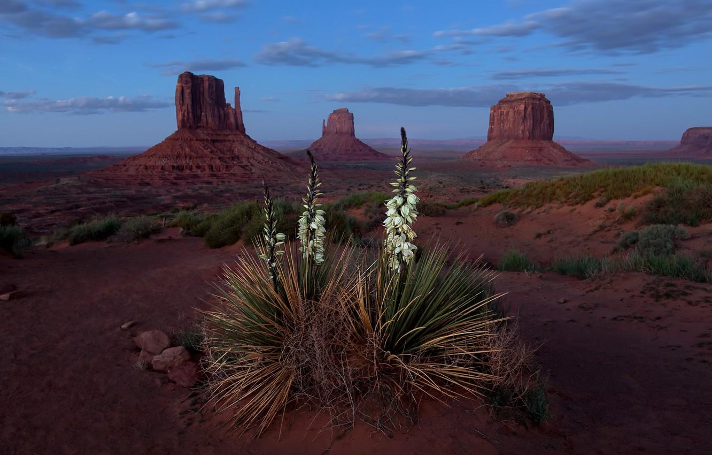 Photo wallpaper Landscape, Blue Hour, Monument Valley