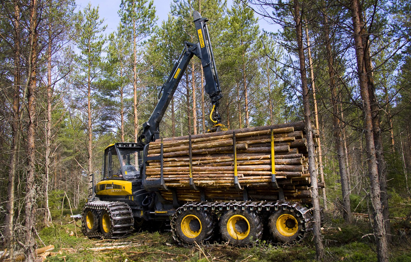 Photo wallpaper forest, trees, arrow, cabin, wheel, logs, the truck, manipulator, forestry equipment, Ponsse, forwarder, Ponsse Wisent …
