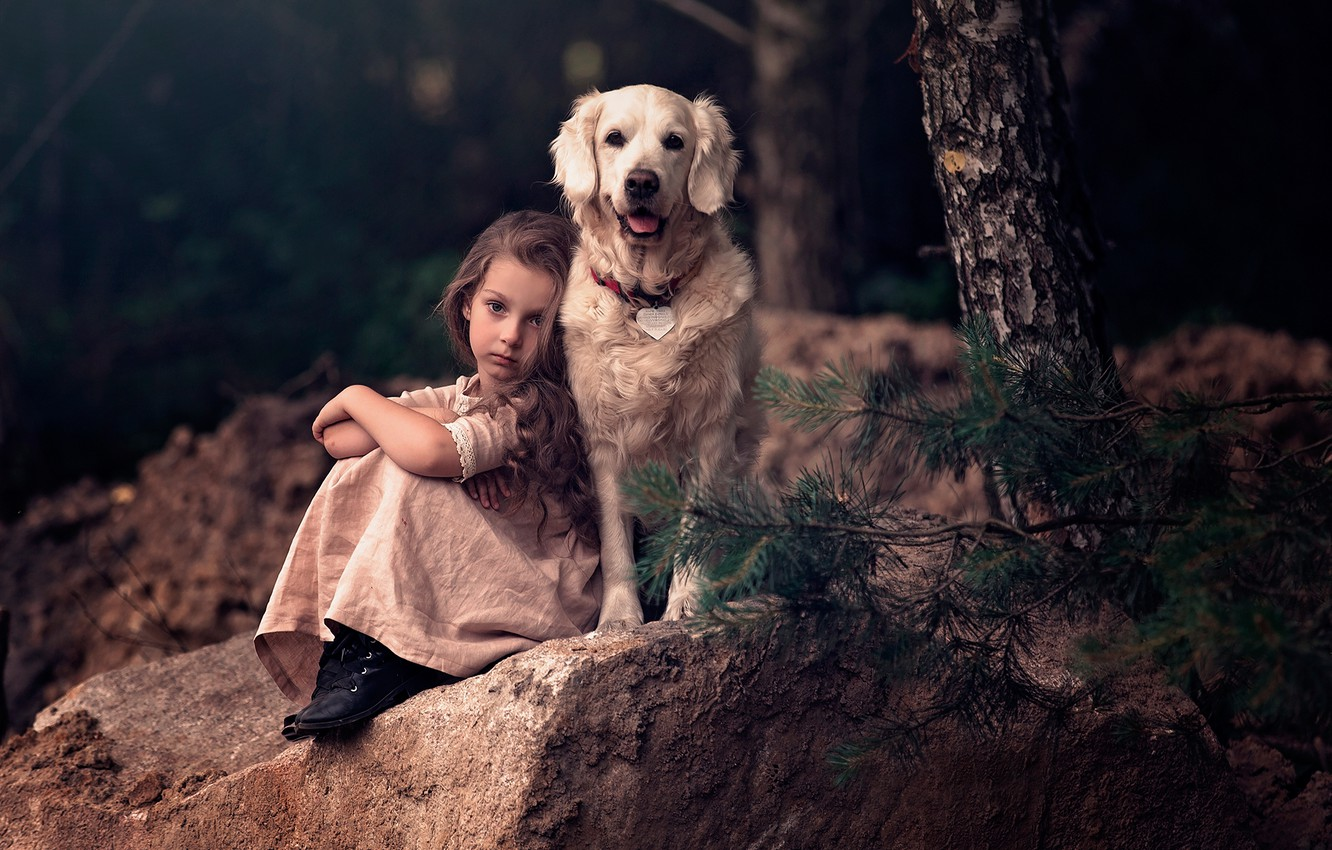 Photo wallpaper branches, tree, stone, dog, girl, friends