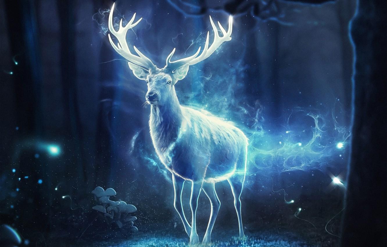 Photo wallpaper Night, Forest, Magic, Deer, Light, Fantasy, Horns, Art, Fiction, Magic, Animal, Forest, Horns, Animal, Deer, …