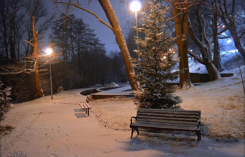 Photo wallpaper Winter, Night, Snow, Lights, Park, Winter, Night, Park, Snow, Benches