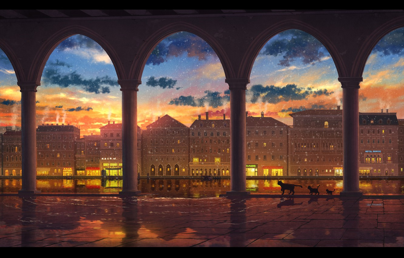 Photo wallpaper the sky, water, cats, sunset, the city
