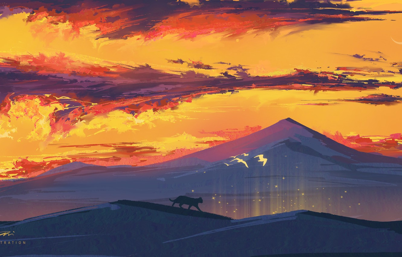 Photo wallpaper cat, sunset, nature, hills