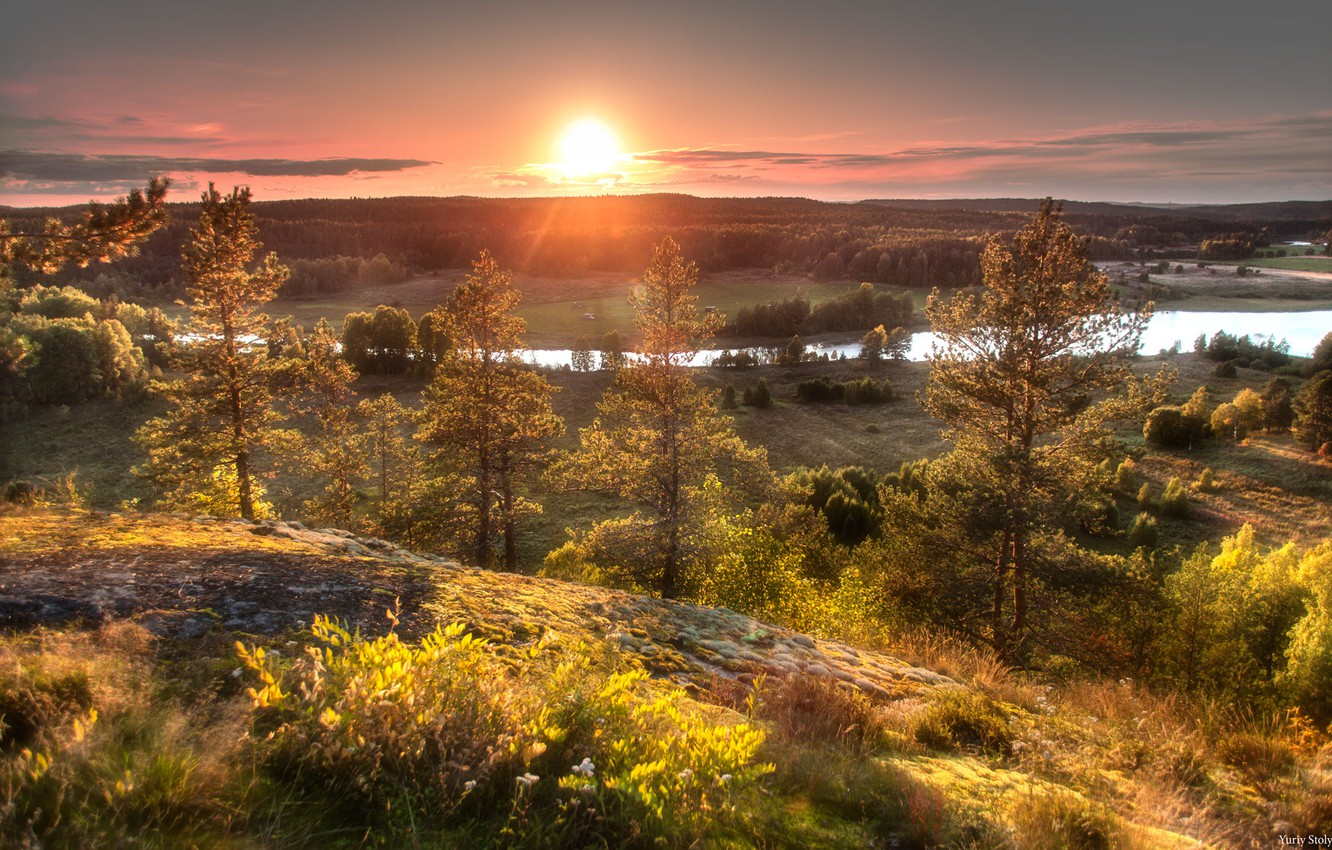 Photo wallpaper forest, the sun, trees, sunset, nature, river, Stolypin Yuri