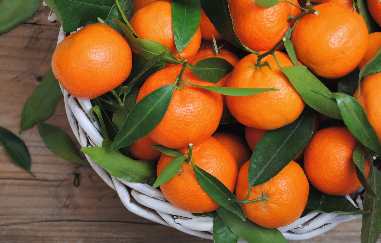 Photo wallpaper citrus, leaves, tangerines