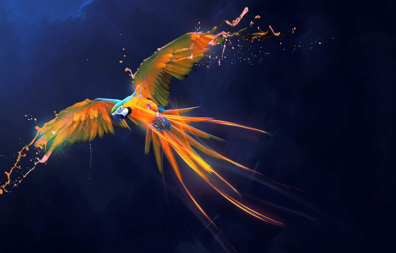 Photo wallpaper abstraction, background, bird, paint, wings, feathers, art, parrot, Ara