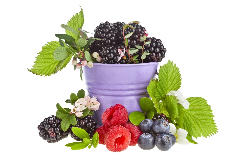 Photo wallpaper leaves, berries, raspberry, bucket