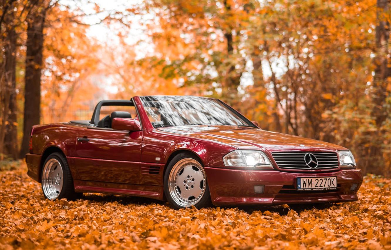 Photo wallpaper AMG, Mercedes - Benz, SL500, R129
