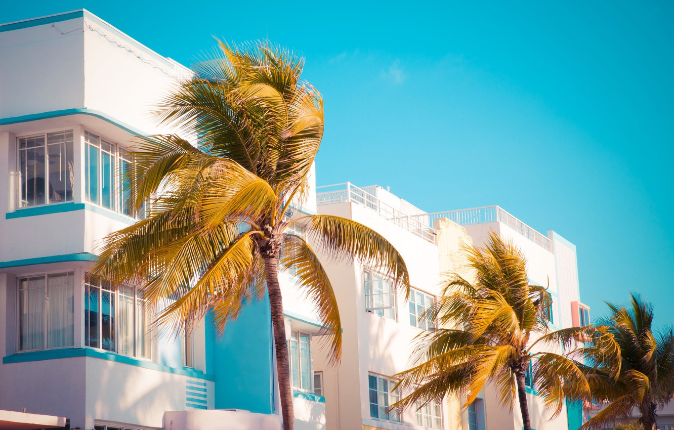 Photo wallpaper the sky, Palma, palm trees, stay, the building, the hotel