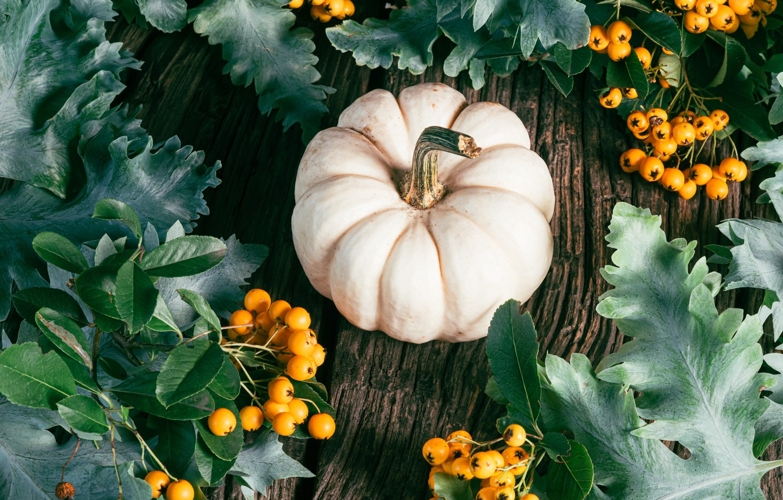 Photo wallpaper autumn, leaves, branches, berries, the dark background, Board, yellow, pumpkin, white, bokeh, hawthorn