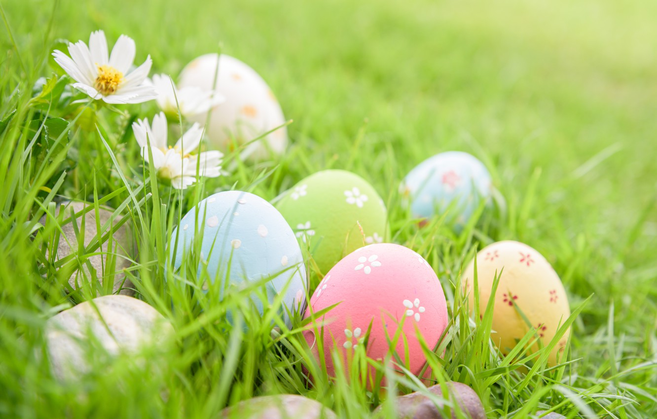Photo wallpaper grass, flowers, eggs, Easter, happy, flowers, eggs, easter, decoration