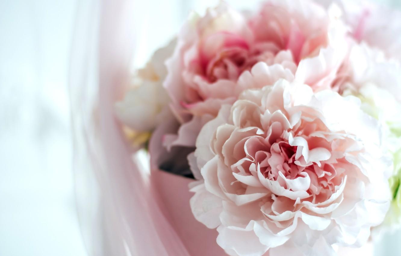 Photo wallpaper flowers, holiday, box, gift, tenderness, interior, bouquet, pink, flowers, peonies, hydrangeas, girls