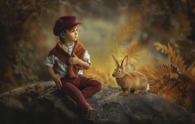 Photo wallpaper autumn, nature, stones, animal, vegetation, boy, rabbit, child, Jansone Dace