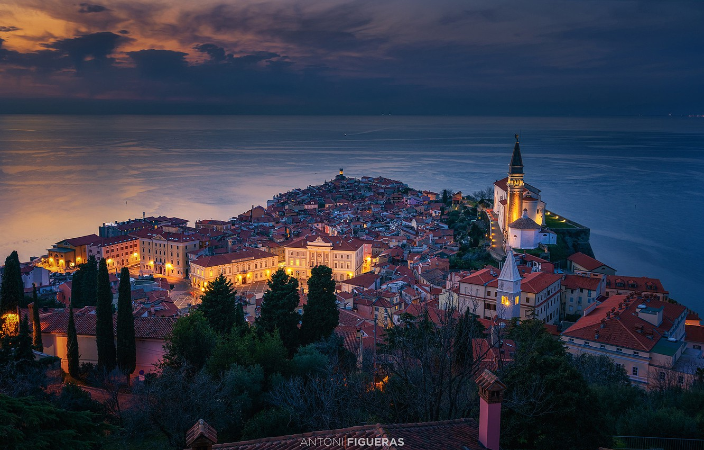 Photo wallpaper sea, trees, building, home, panorama, night city, Piran, Slovenia, Slovenia, The Adriatic sea, Adriatic Sea, …