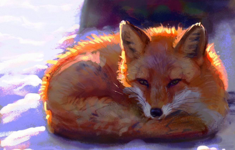Photo wallpaper winter, snow, Fox, by Meorow