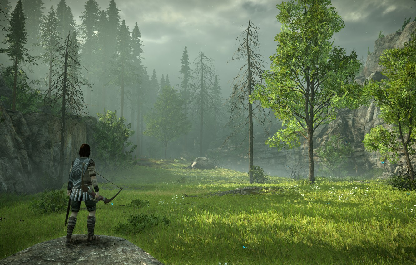 Photo wallpaper forest, grass, meadow, Shadow of the Colossus, In the shadow of the colossus