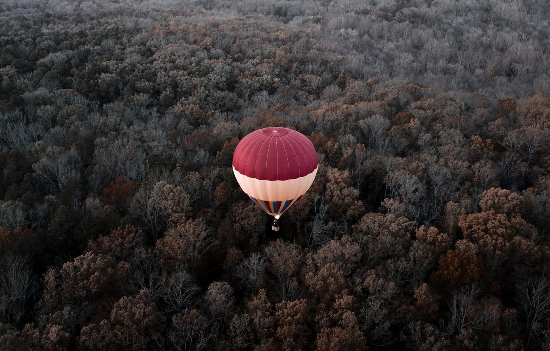 Photo wallpaper autumn, forest, flight, balloon, height, VA, USA, America