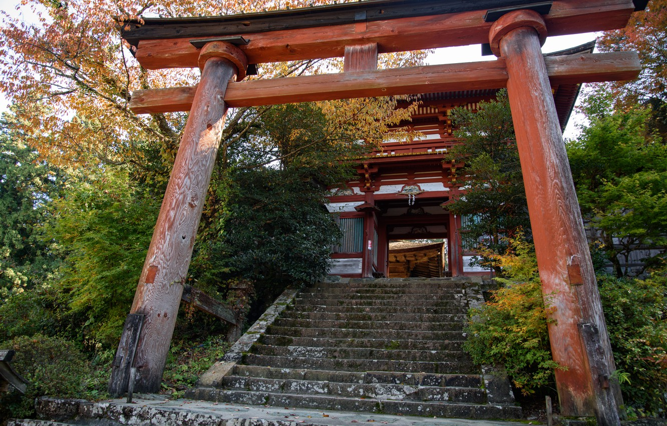 Photo wallpaper Nature, Japan, Ladder, Gate, Temple, Torii