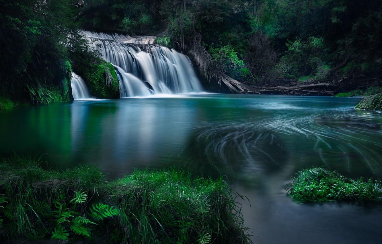 Photo wallpaper forest, river, waterfall, New Zealand, cascade, New Zealand, Hawke's Bay, River Maraetotara, Hawke's Bay, Maraetotara …